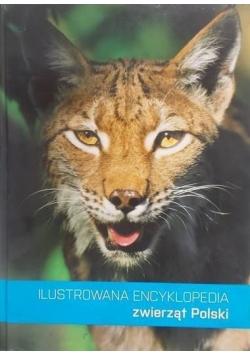 Ilustrowana encyklopedia zwierząt Polski, nowa