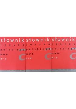 Słownik języka polskiego PWN, Tom I-III