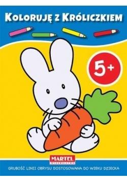 Koloruję z króliczkiem 5+