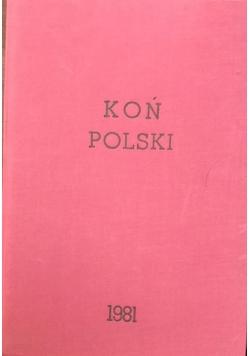 Koń Polski, 4 numery, 1981 r.
