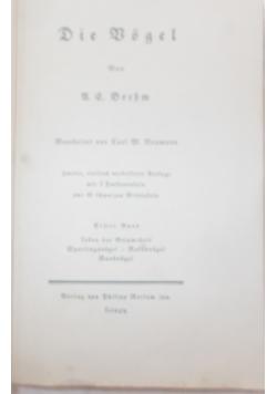 Die Bogel, 1928
