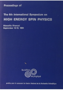 High energy spin physics
