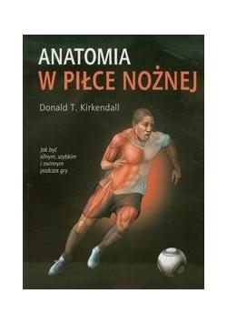 Anatomia w piłce nożnej