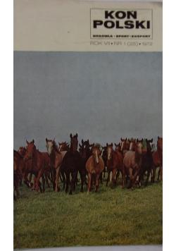 Koń Polski (25)