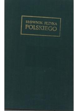 Słownik języka polskiego, tom 11