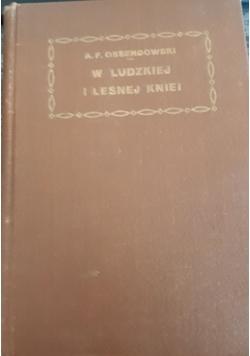 W ludzkiej i leśnej Kniei, 1923 r.