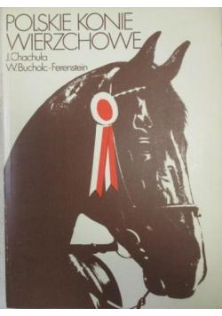 Polskie konie wierzchowe