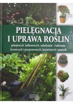 Pielęgnacja i uprawa roślin