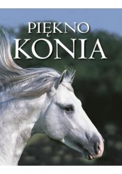 Piękno konia TW w.2015