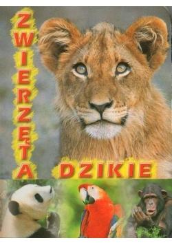 Zwierzęta dzikie