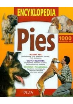 Encyklopedia pies