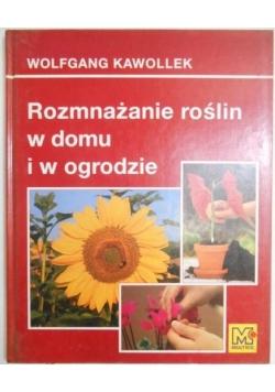 Rozmnażanie roślin w domu i w ogrodzie