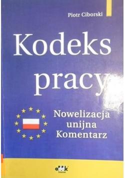 Kodeks pracy nowelizacja unijna komentarz