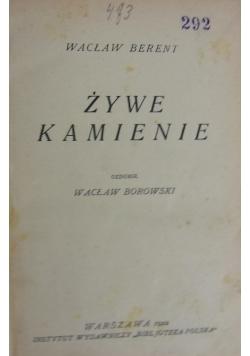 Żywe kamienie, 1922 r.