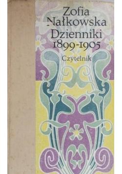 Dzienniki 1899-1905