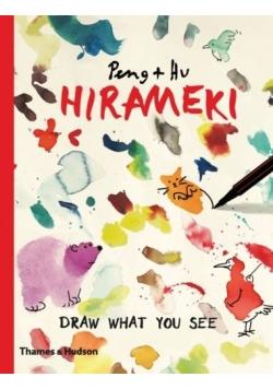Hirameki,draw what you see