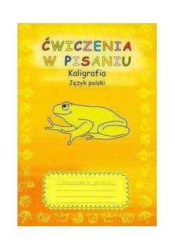 Ćwiczenia w pisaniu Kaligrafia J.polski zeszyt 2