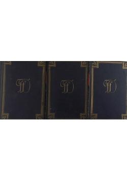 Bracia Karamazow, zestaw 3 książek, 1928r