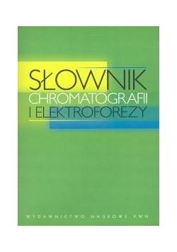 Słownik chromatografii i elektroforezy