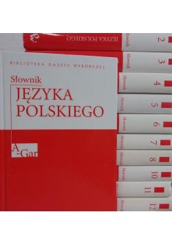 Słownik Języka Polskiego,tom I-VIII i X-XII