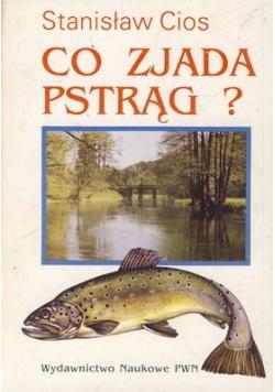 Co zjada pstrąg?