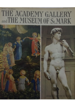 The academy gallery and the museum of st. Mark