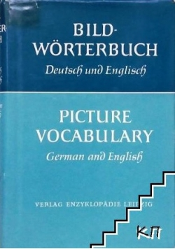 Picture vocabulary