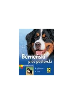 Berneński pies pasterski RM