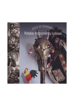 Polskie instrumenty ludowe, nowa