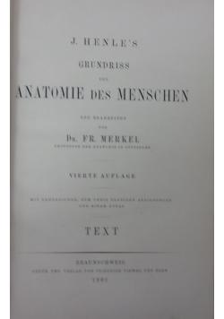 Grundriss der Anatomie des Menschen,1901r.