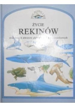 Życie rekinów