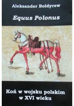 Koń w wojsku polskim w XVI wieku