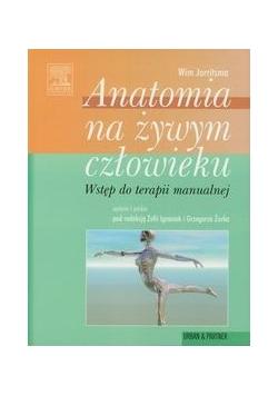 Anatomia na żywym człowieku