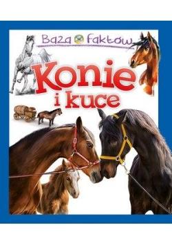 Baza faktów. Konie i kuce