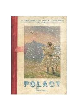 Polacy. Część druga. 1914 r.