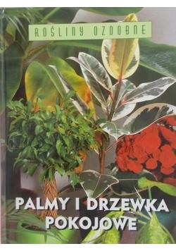 Palmy i drzewka pokojowe