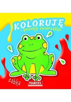 Koloruję i poznaję zwierzątka. Żabka