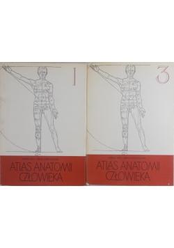 Atlas anatomii człowieka, tom I i III