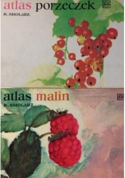Atlas porzeczek/Atlas Malin