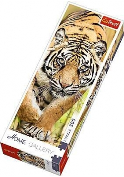 Puzzle 300 Home Gallery - Skradający się tygrys