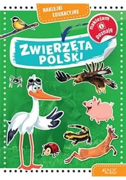 Naklejki edukacyjne. Zwierzęta Polski