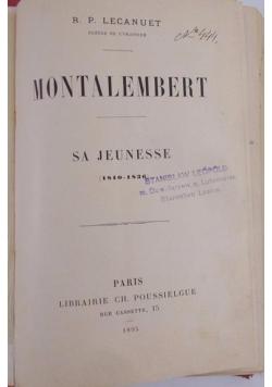 Montalembert, 1895 r.