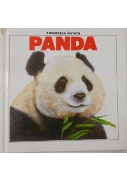 Panda. Zwierzęta świata