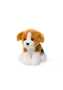 Beagle siedzący 15cm ACP