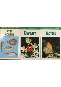 Ryby morskie/Owady/Motyle