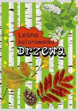 Leśna kolorowanka. Drzewa