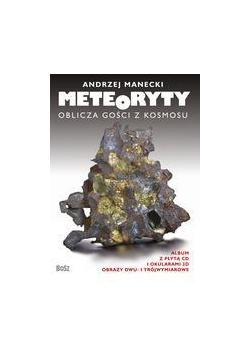 Meteoryty. Oblicza gości z kosmosu