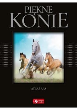 Cuda. Piękne konie (exclusive) wyd.2018