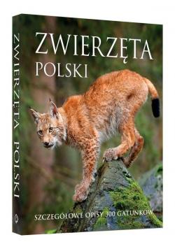 Zwierzęta Polski w.2018