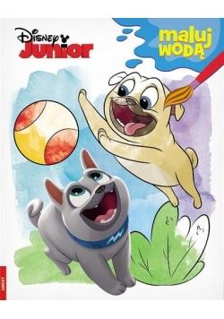 Disney Junior. Maluj Wodą